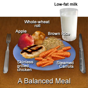 What Is a Balanced Meal Anyways?