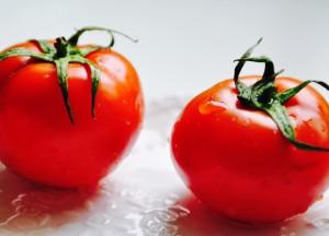 tomato-1702896_1920