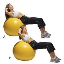 photo credit: wiki-fitness.com
